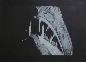 Emerging, intaglio print on rag paper, 2009