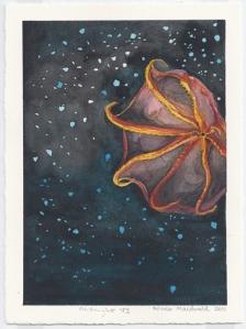 Midnight VI, watercolour on rag paper, 2011